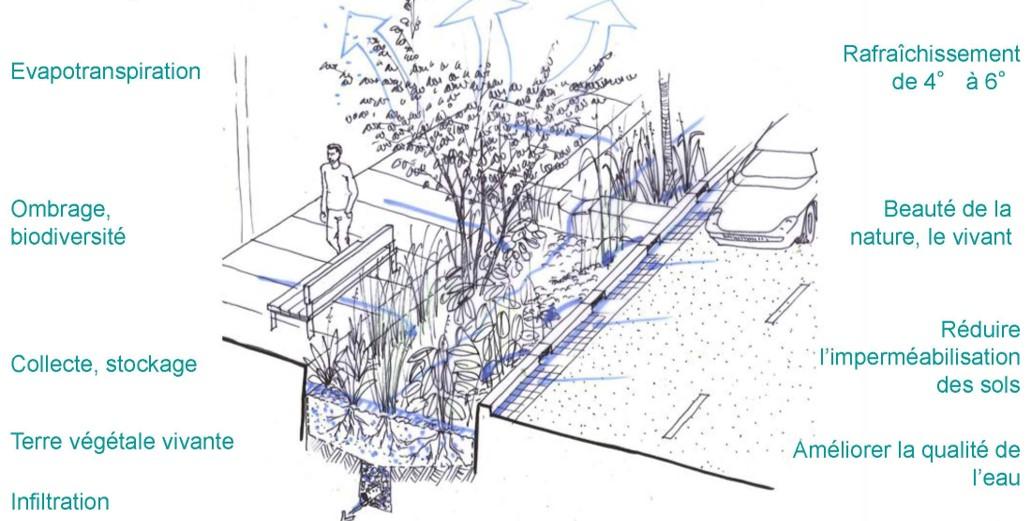 Schéma qui décrit la circulation de l'eau en ville